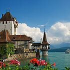 Suisse Postcards - 1 by sorinab