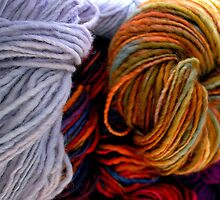 The Wool Anenomes by oulgundog