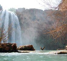 Waterfall at Havasu Falls, AZ by Justin Zuure