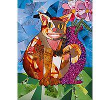 Happy Cat with Vase Photographic Print
