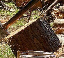 Flying Sawdust! - Chopping Wood - NZ by AndreaEL