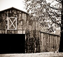 Open Up the Barn Doors by MeanChristine