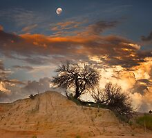 Moonrise - Lake Mungo by Hans Kawitzki
