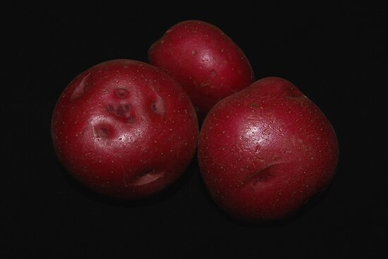 potato trio: red by dedmanshootn