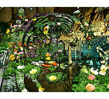 Tiger Wildflower Cave Pool Photographic Print