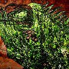 Iguana Fern Cave by Wyldspace