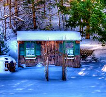 Gone All Winter by Monica M. Scanlan