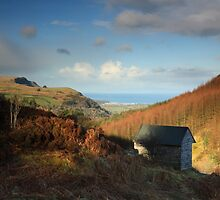View of Glenariff Glen looking towards the sea. by Fred Taylor