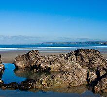 Newquay Cornwall by David Wilkins