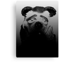 02-27-2011  Experimental Bear Canvas Print