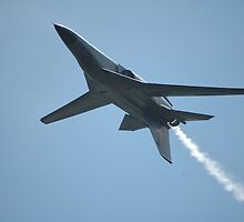 F111 Inverted @ Williamtown Airshow 2010 by muz2142