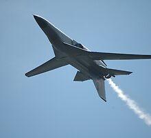 F111 Inverted @ Williamtown Airshow 2010 by muz2142