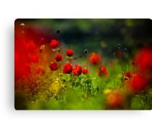 still love poppies Canvas Print