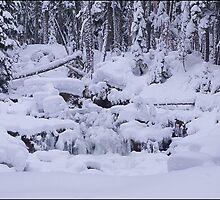 Rush Creek Indian Heaven  by Don Siebel