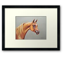 """Arabian horse study"" Framed Print"