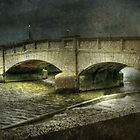 Axmouth Bridge by Catherine Hamilton-Veal  