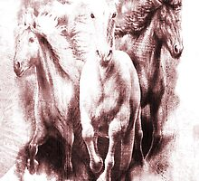 White Equines. by Vitta