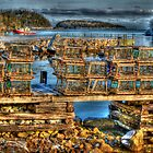 Lobster Traps in the Cove by Roxane Bay
