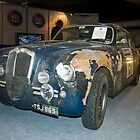Lancia Aurelia B20 GT by Willie Jackson
