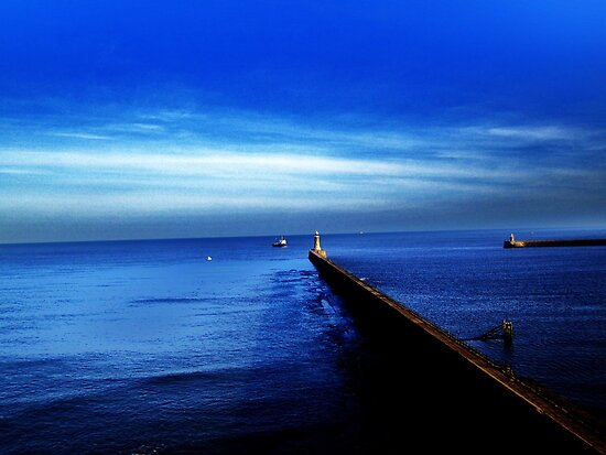 Blue by Ladymoose