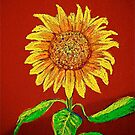 Sunflower  by vickimec