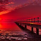 """Swan Bay Red"" by Phil Thomson IPA"