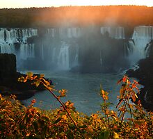 sunset at Iguassu Falls by supergold