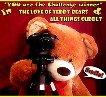 "Created for ""Challenge Winner"" banner by Donna Keevers Driver"