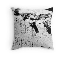 Jim Morrison grave Throw Pillow