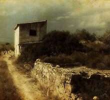 cami del maset by Joan R Bada
