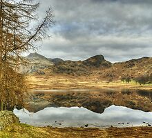 The March Tarn by VoluntaryRanger