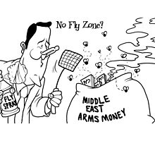 No Fly Zone? by Alex Hughes