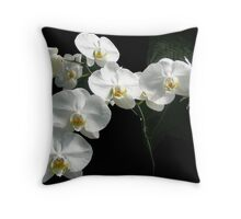 Phalaenopsis aphrodite (Moon Orchid) & Ferns Throw Pillow