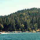 Lake Arrowhead by Julie Moore