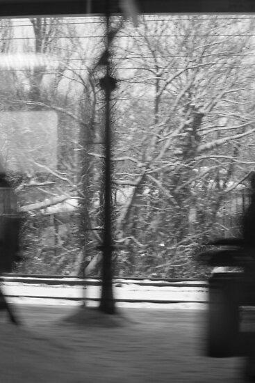 Trainstation on the move by eddiebotha