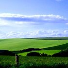 South Downs England ©  by Dawn M. Becker