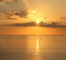 Late Sun - Marco Island, Florida by Cari Graves