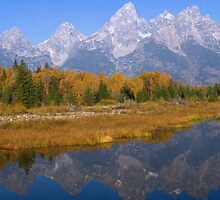 Grand Teton Autumn Reflections by Stephen Vecchiotti