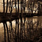 Reflections by StefanFierros