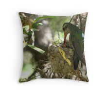 Broad-billed Hummingbird ~ Life Begins Throw Pillow