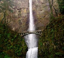 Multnomah Falls by andygirl