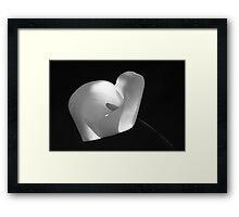 Jarro 6460 Framed Print