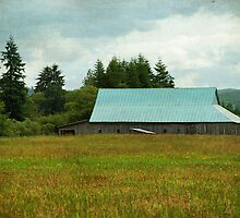 Blue Tin Roof - Chehalis, Wa. by Terrie Taylor