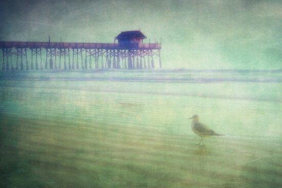 Beached by Angela King-Jones