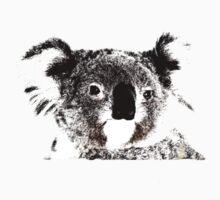 Koala by Craig Stronner