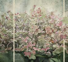 ~ Lighter Shades of Pale ~ by Lynda Heins