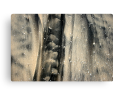 An Xray In The Sand Canvas Print