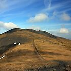 SKIDDAW LITTLE MAN by Phil  WEBB
