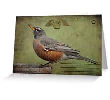 Vintage Robin Postcard Greeting Card