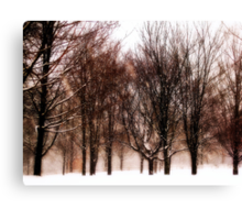 Winter's Austerity  Canvas Print